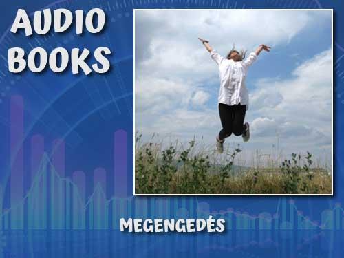 audiocover-megengedes-2